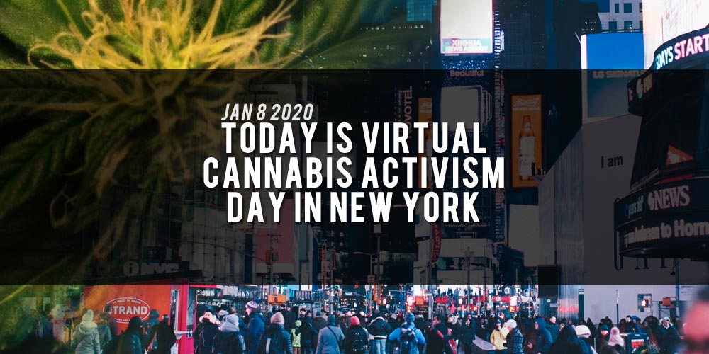 Virtual cannabis activism day, New York