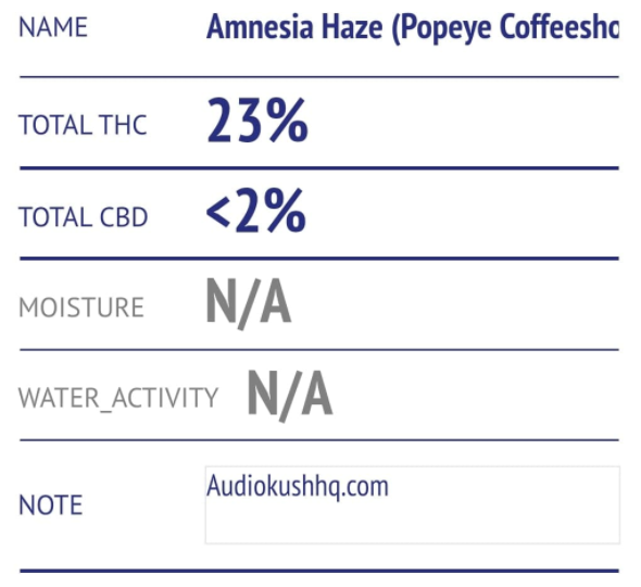 One strain you will see across Amsterdam in basically every coffeeshop is Amnesia Haze.
