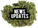 news updates nug button audiokush